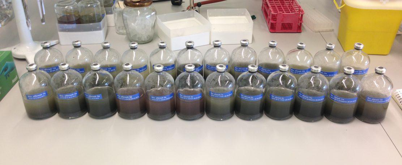 Thermische versnelling bioremediatie van grondwater