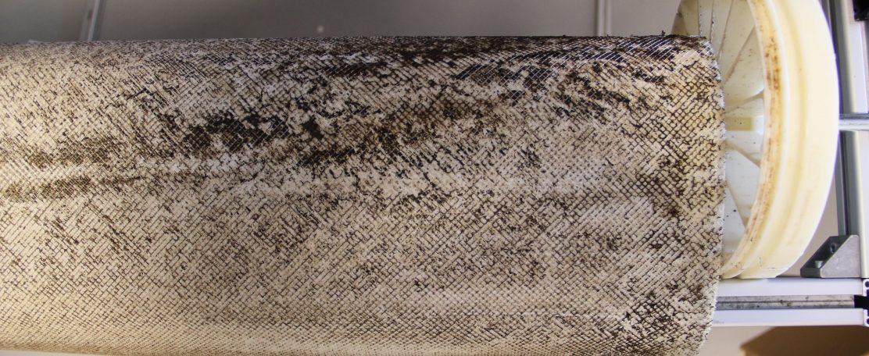 Biofilmvorming op membranen