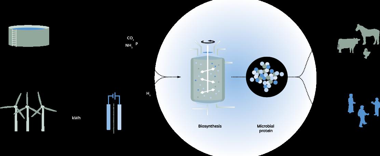 Unieke pilot Power to Protein gestart op RWZI Enschede