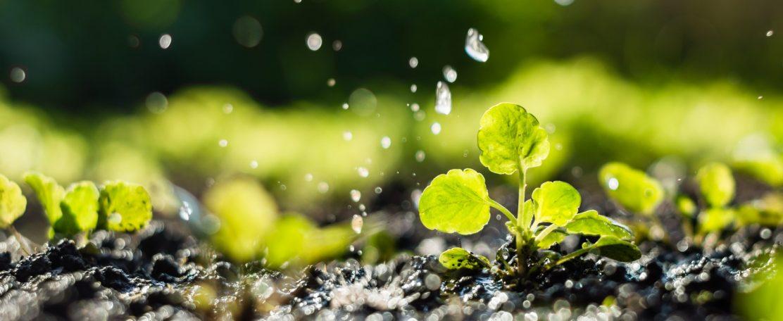 Openstelling oproep voor PPS-projecten Landbouw, Water, Voedsel